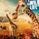 Australia Wild Life and Zoo